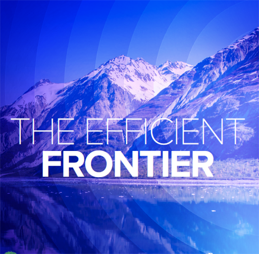 SRPInsight Issue 2 - The efficient frontier